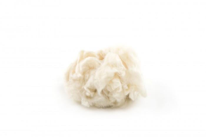 Kapok-fibre-